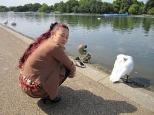 白鳥とニコ
