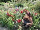 ガーデンカクレルニコ