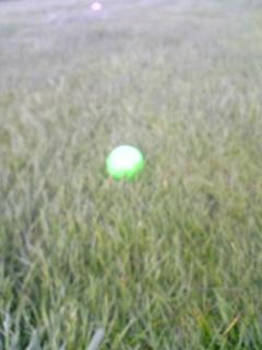 コン吉のボール