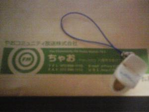 便器のストラップ(TOTO製)