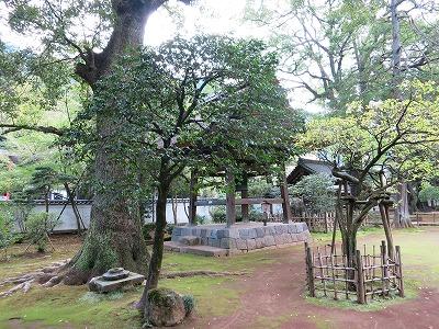 IMG_6807-hakoneyumoto.jpg