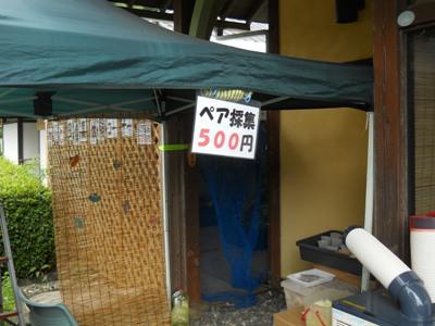 コピー ~ 20120812 015