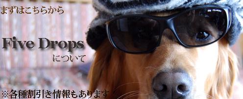 top_setumei_20110307232017.jpg