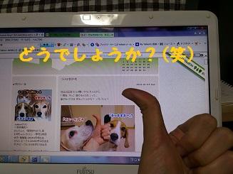 DSC_0914-4.jpg