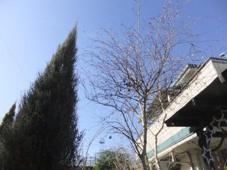 2013-12-29_08.jpg