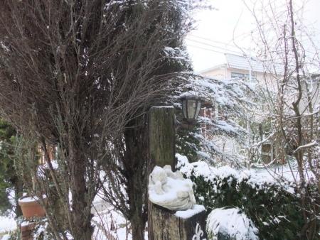 2014-01-19_17.jpg