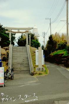 nojima03.jpg