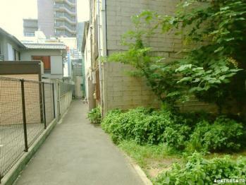 takamatsu04e.jpg