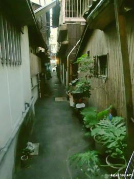 takamatsu10c.jpg