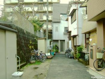 tanimachi01e.jpg