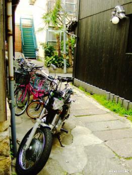 tanimachi02c.jpg