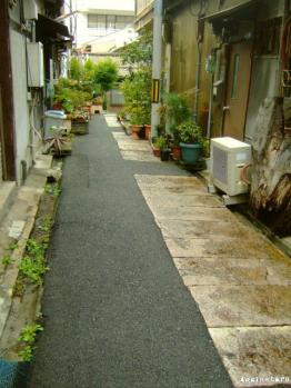 tanimachi04f.jpg