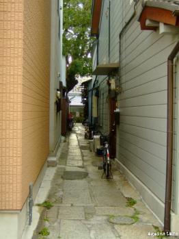 tanimachi06b.jpg