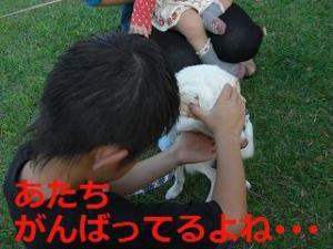 110_20111024203141.jpg