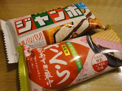 1102sakura001.jpg