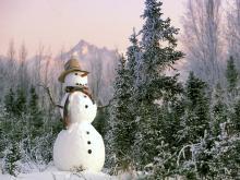 光と愛の感謝日記 雪の中の小さな天使たち