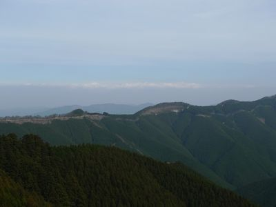 2010-11-28 009