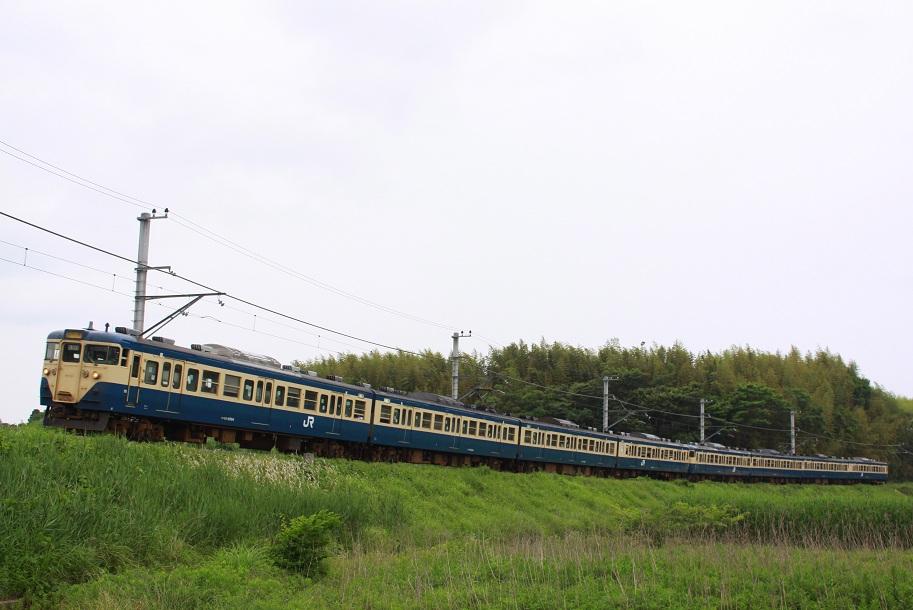 IMG_1375-1.jpg
