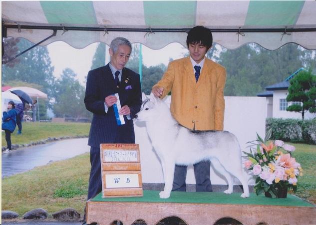 雪ちゃん14-10-13埼玉西富士見ファミリードッククラブ展