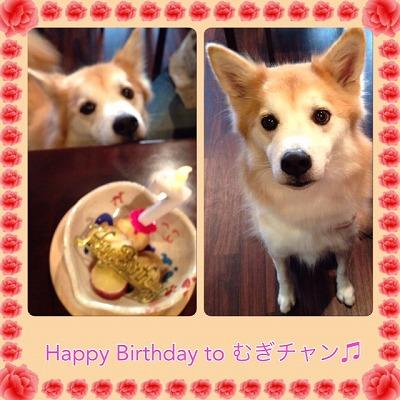 むぎチャン/Birthday Girlちゃん♪♪