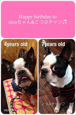 Birthday girls nicoちゃん&こつぶチャン♪♪