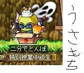 Maple110108_135953.jpg
