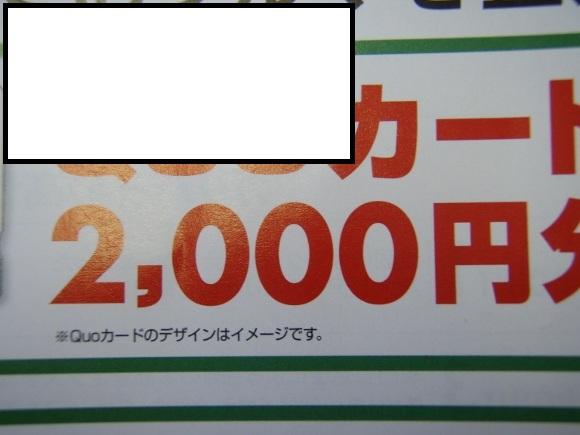 P2180191 (580x435)