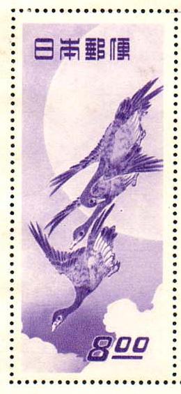 tuki (260x565)