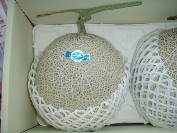 P6050193 (580x435)