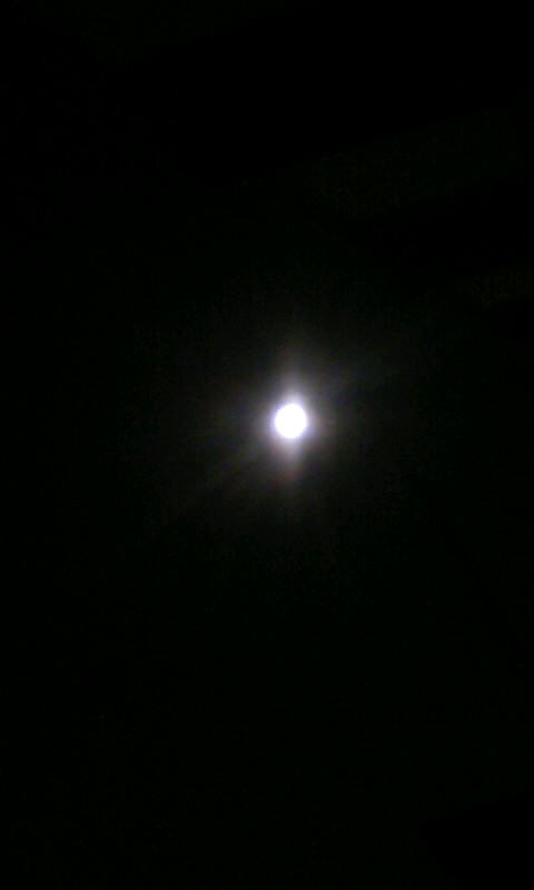 100725_224132お月様