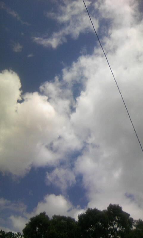 100804_101413雲