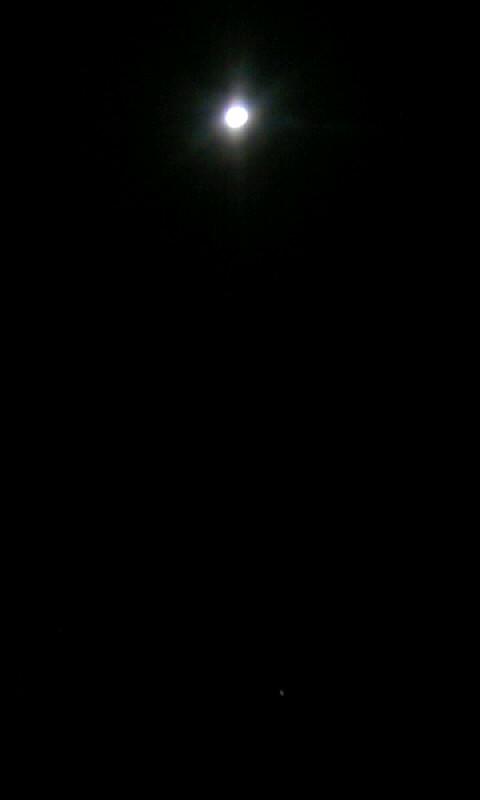 100829_043845お月様&木星?