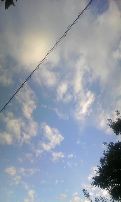 100909_060544雲
