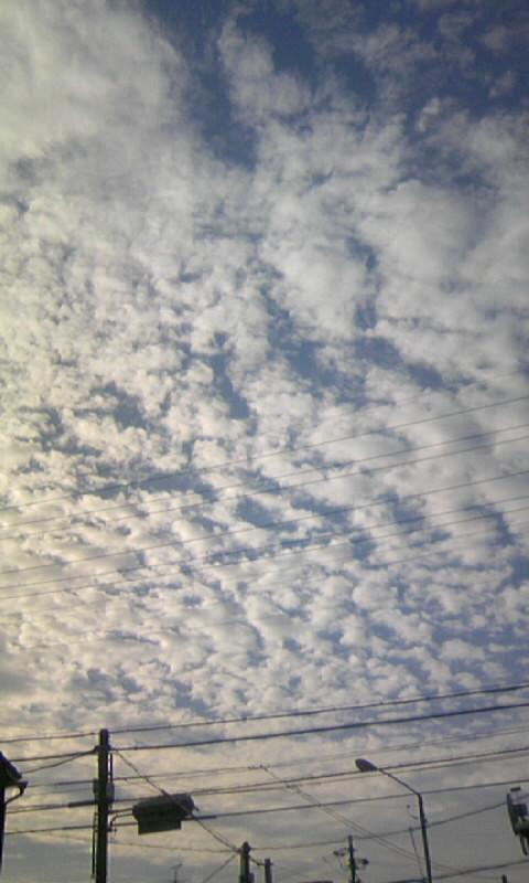 101012_080202羊雲