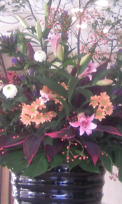101015_100810KKRホテルの花