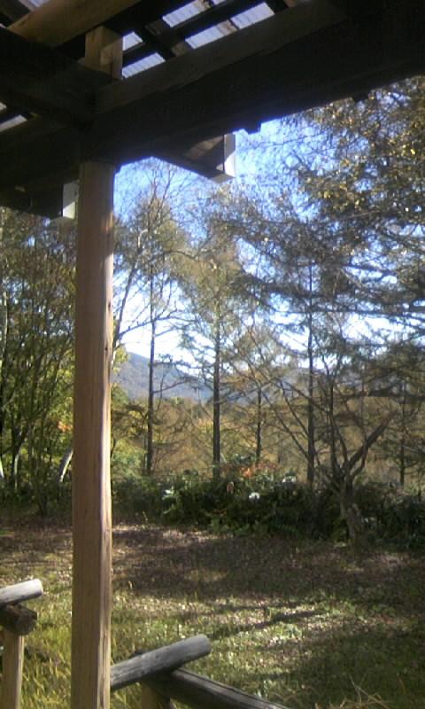 101104_113807山荘