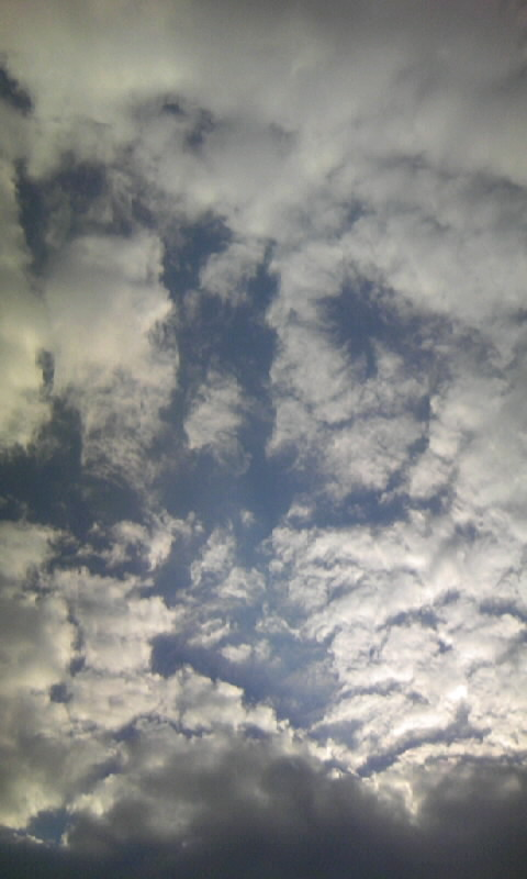 101109_080110雲