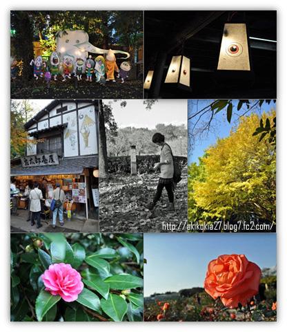 20111120--jindaiji.jpg