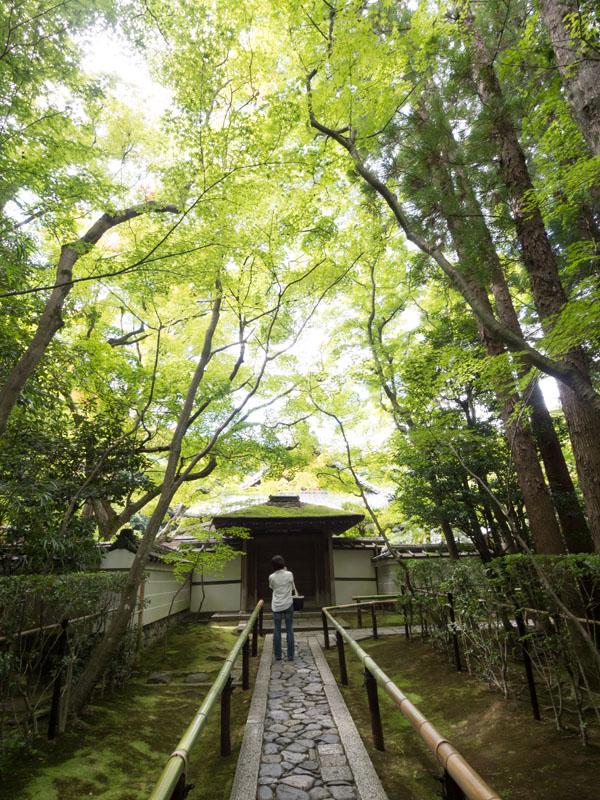 20120902daitokuji07.jpg