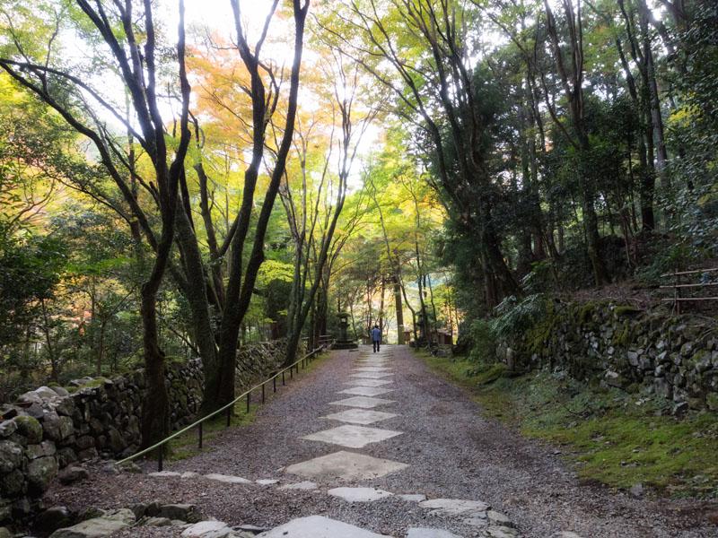 20121110kouzanji11.jpg