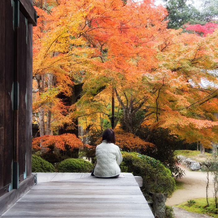 20121110saimyouji02.jpg