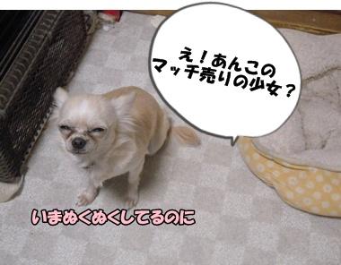 22-12-13あんこ001