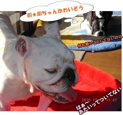 Bi★Bi22-12-20DSCN0501