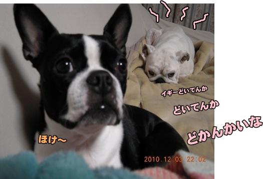 Bi★Bi22-12-20DSCN0496