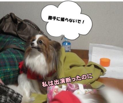 Bi★Biムーン22-12-30005
