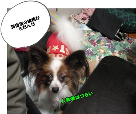Bi★Biムーン22-12-30003