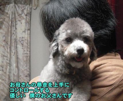 Bi★Biムーン22-12-30007
