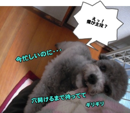 Bi★Biムーン22-12-30001