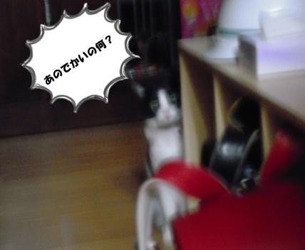 Bi★Biムーン22-12-30032