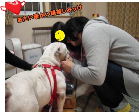 Bi★Biムーン22-12-30028
